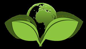 eco-friendly service